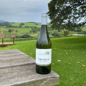 bottle-wine
